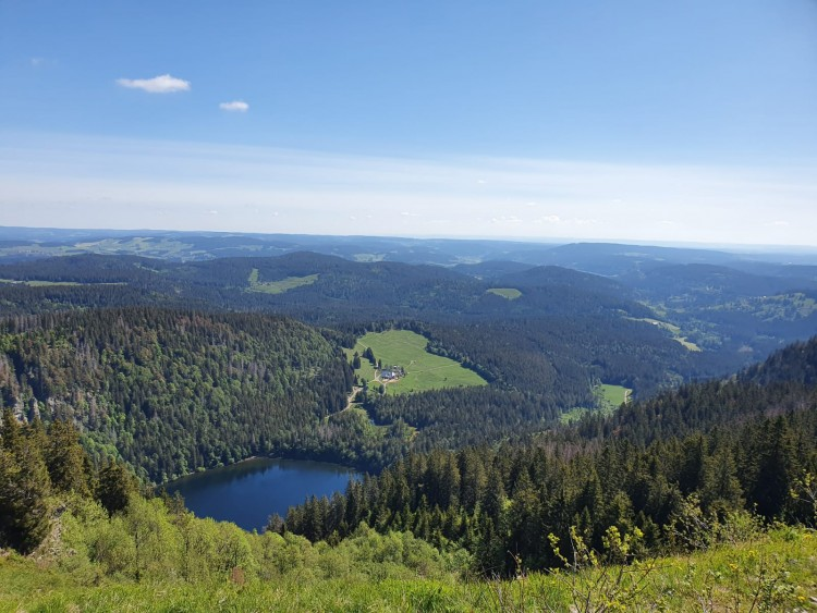 Titisee in the Schwarzwald